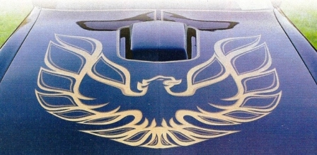 Firebird Decal
